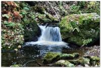 kleiner Wasserfall in der Ravennaschlucht